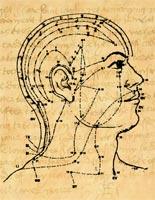 KIN-Head-Meridian